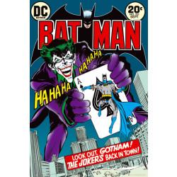 Dc Comics Batman/Joker Front Cover Framed Wall Art