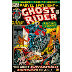 Marvel Ghost Rider Comic Cover Framed Wall Art