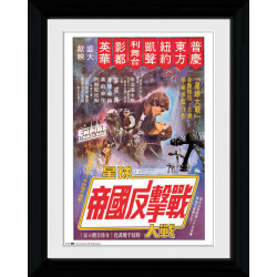 Star Wars Chinese Framed Collectible Movie Print