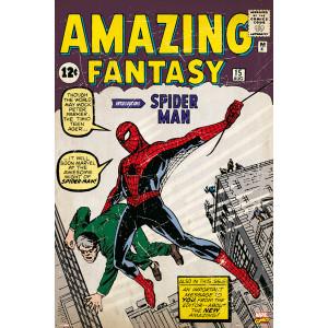 Marvel Spiderman Issue No.1 Framed Wall Art